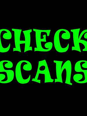 USA Business Void Check Scan