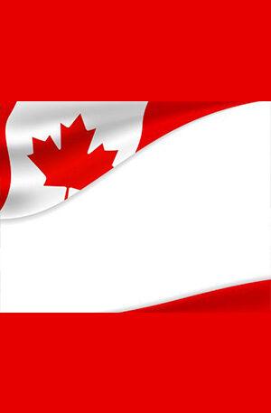 FRESH CANADA DUMPS VISA, PLATINIUM, BUSSINESS, GOLD PREMIUM, INFINITY (T2, Code 101)