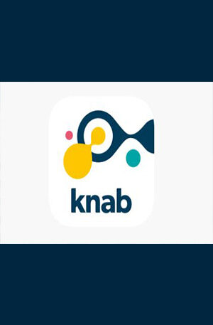 Knab Bank account non-hacked