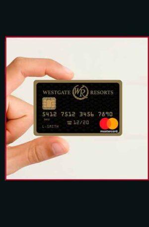 1 x MasterCard Prepaid 3100$ / 2700€