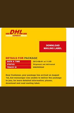 DHL 2 V1 Phishing page | Scam Page